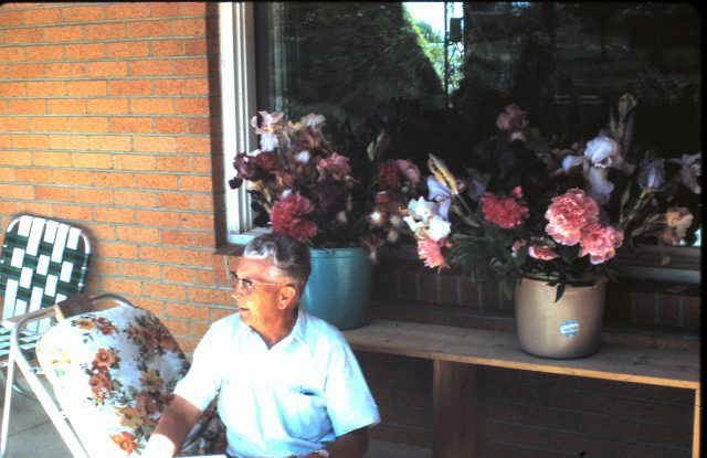 Seely_Francis_Leland_Flowers2